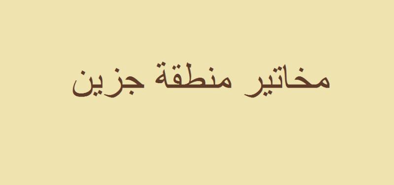 مستنكرين كلام الأسمر... مخاتير جزين:لإحقاق الحق والعدالة ليكون عبرة لغيره