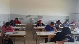 لانهاء العام الدراسي واجراء الامتحانات... مندوبو المدارس الرسمية في صور: للاسراع في اقرار سلسلة الرتب والرواتب