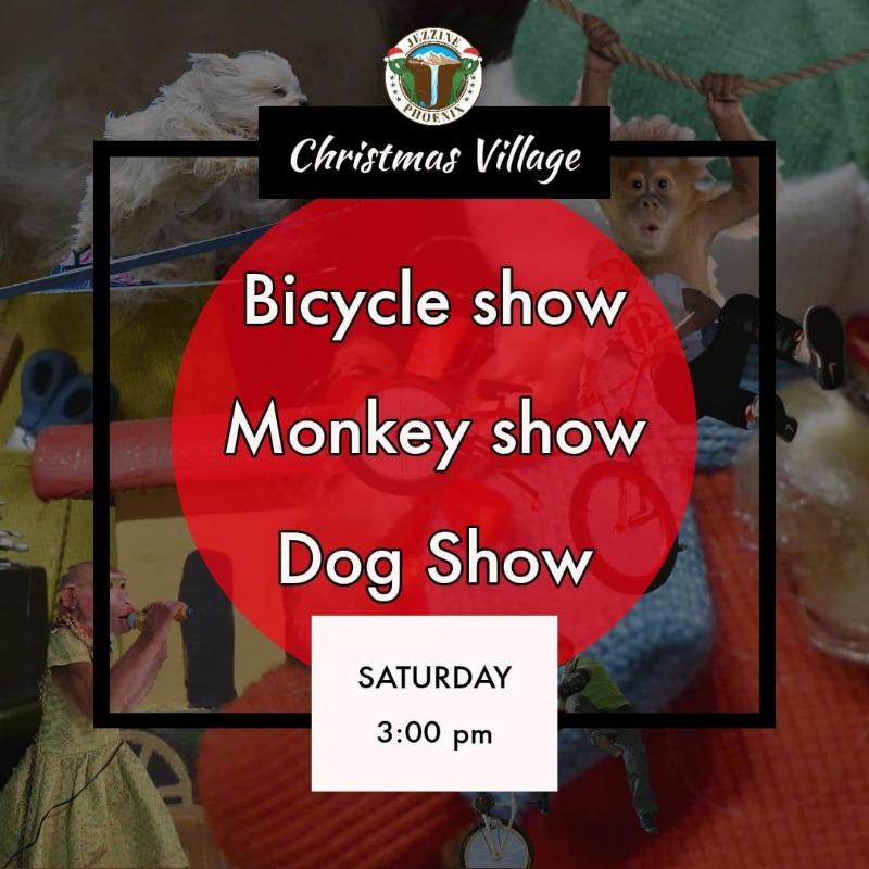 عروض الدراجات الهوائية والقرود والكلاب اليوم بعد الظهر في جزين