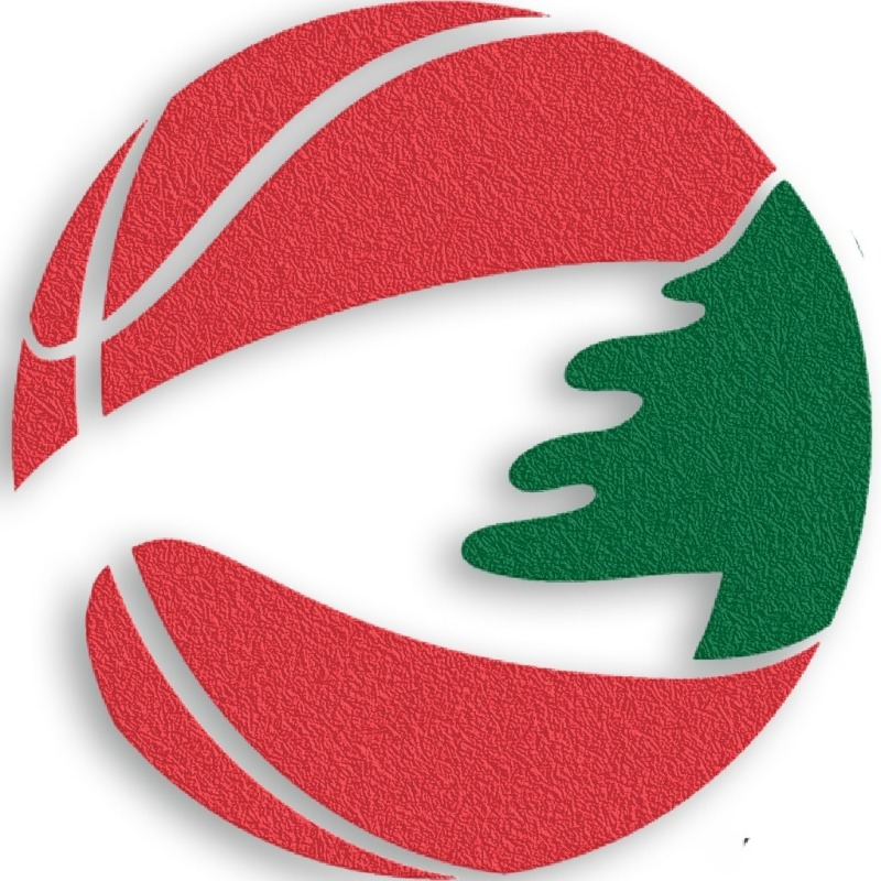 جدول مباريات المراحل الاولى ببطولة لبنان لكرة السلة